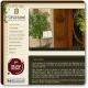 Casa Babel: Un hotel rural con encanto en Villalonga, Gandia, Valencia
